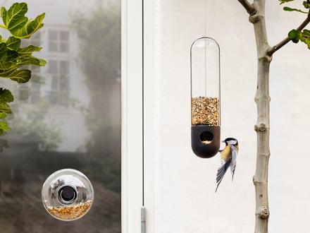 Vogelhäuschen - Entspannung für Mensch und Tier