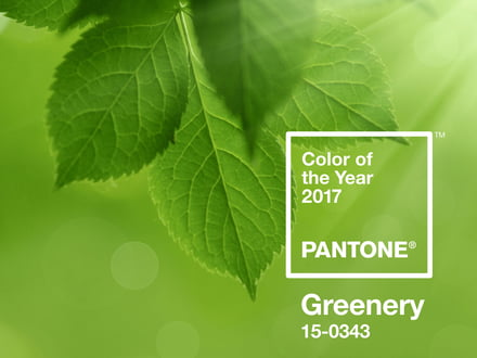 pantone farbe des jahres 2017 greenery. Black Bedroom Furniture Sets. Home Design Ideas