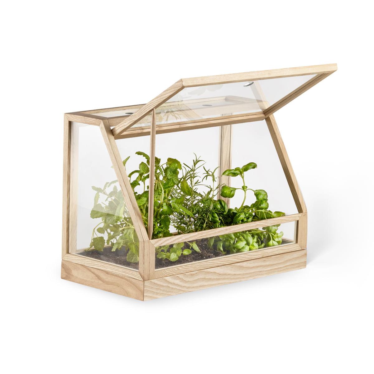 Greenhouse Mini von Design House Stockholm