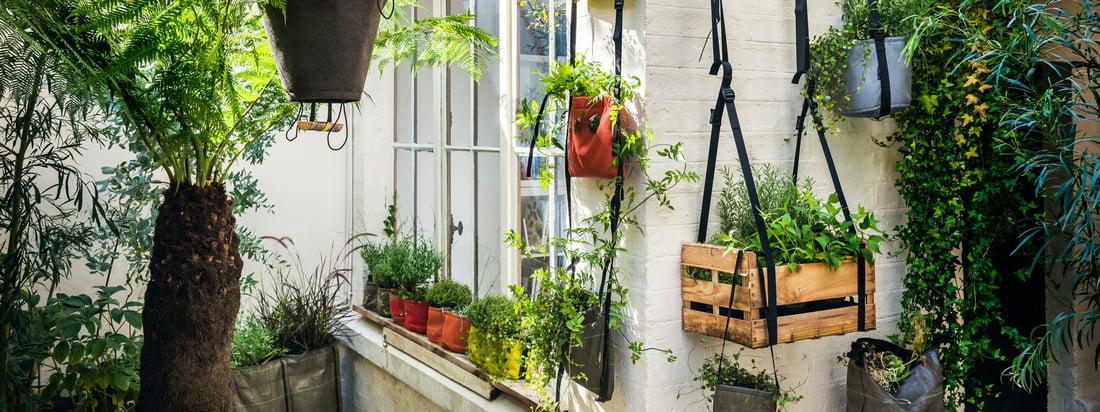 Bacsac, ein französisches Designunternehmen, produziert Pflanzsäcke wie die Baclong Pflanztasche. Der braune Behälter ist in unterschiedlichen Längen wählbar - passend zur Pflanze.