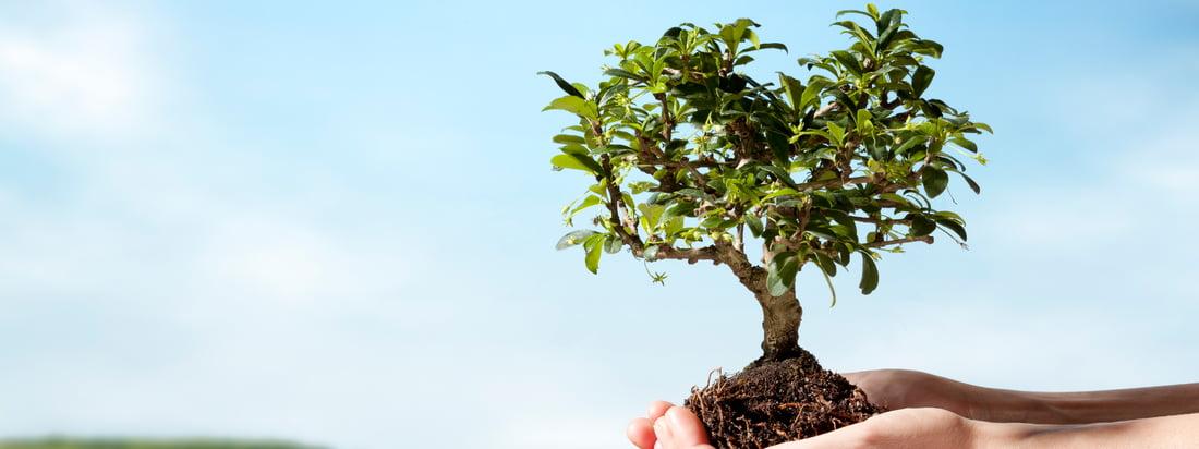 Unternehmen - Ökologisches Selbstverständnis