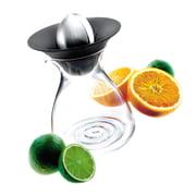 Eva Solo - Fruchtpresse mit Glaskanne