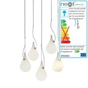 Next Home - Drop_2xs LED Pendelleuchte