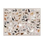 Pop Chart Lab - Cats Categorized