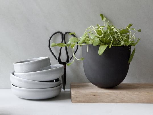 Window-Gardening liegt im Trend: Züchten Sie im Grow Pot von Menu eigene Kräuter. Stilechte Küchenbegleiter: die New Norm Schalen von Menu und die Küchenschere von Hay.
