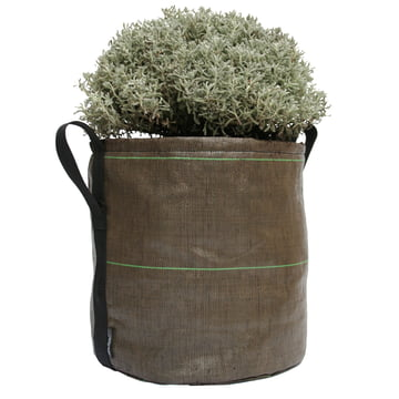 Bacsac Pot Pflanztasche - 25 Liter mit Bepflanzung