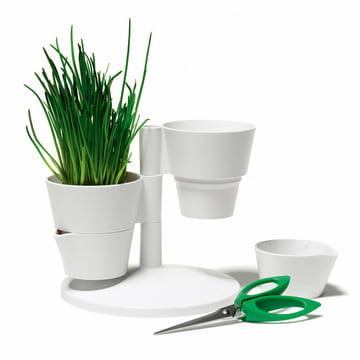 Normann Copenhagen - Herb Stand mit Schere