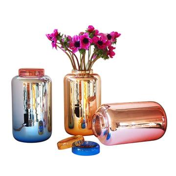 Pulpo - Container Vase - Gruppe, Farben, mit Blume