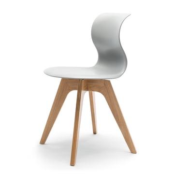 Flötotto - Pro 6 Stuhl Viersternholzuntergestell , Eiche natur / granitgrau , Filzgleiter