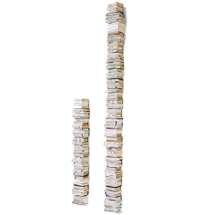 Opinion Ciatti - Ptolomeo Wand-Bücherregal