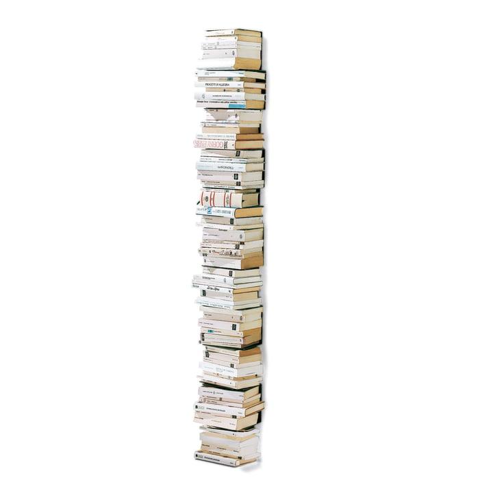 Opinion Ciatti - Original Ptolomeo Wand-Bücherregal
