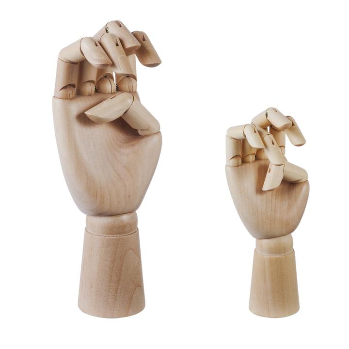 Wooden Hand von Hayin Gross und Klein
