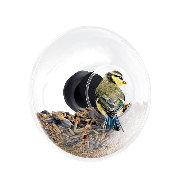 Eva Solo - Fenster-Futterstelle, mit Vogelfutter und Vogel