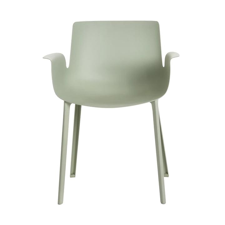 Piuma Stuhl von Kartell in Salbeigrün