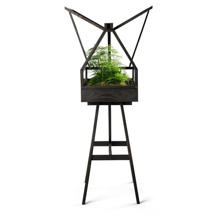 pflegen.Design House Stockholm - Greenhouse, dunkelgrau