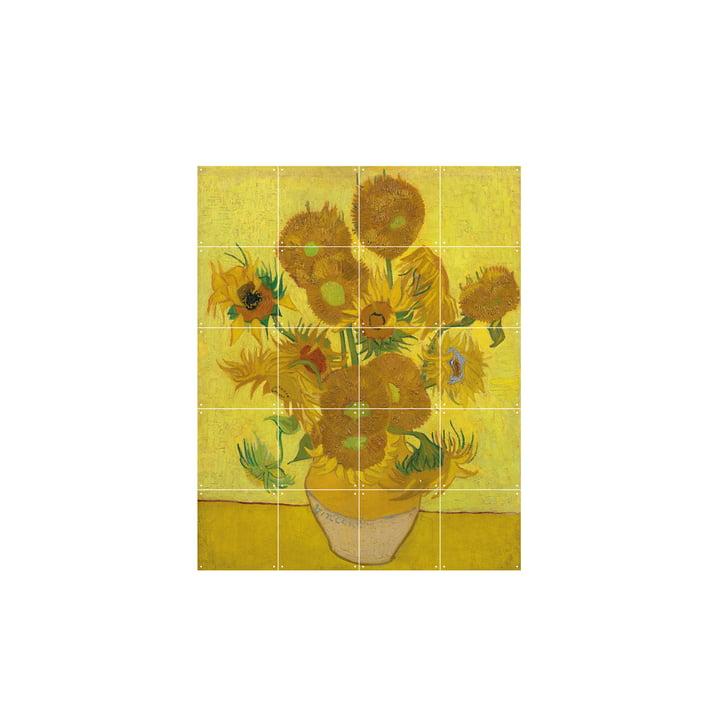 Sonnenblumen (Van Gogh) 80 x 100 cm von IXXI