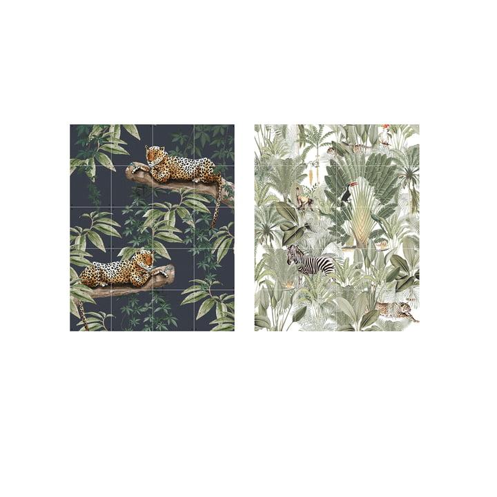 Chilling in the Jungle & Into the Wild 80 x 100 cm von IXXI