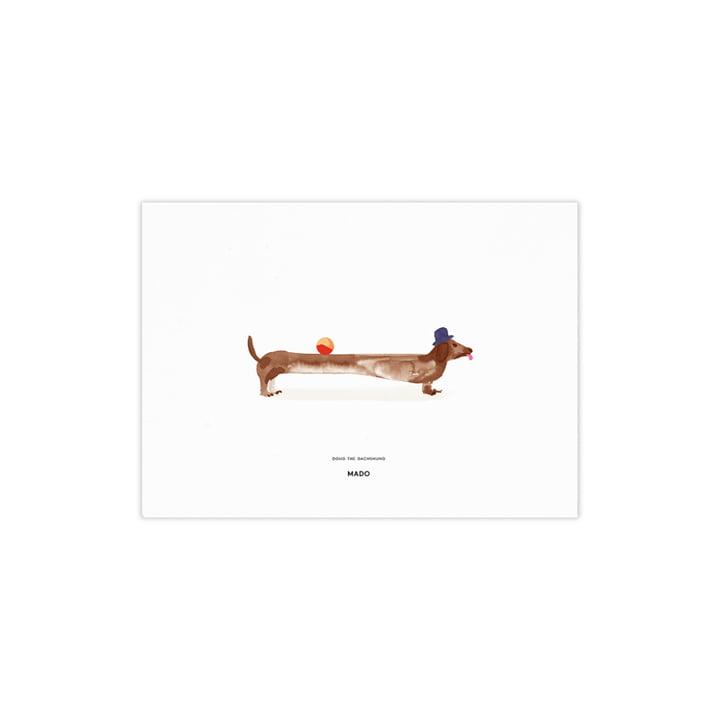 Doug the Dachshund von Paper Collective, 40 x 30 cm