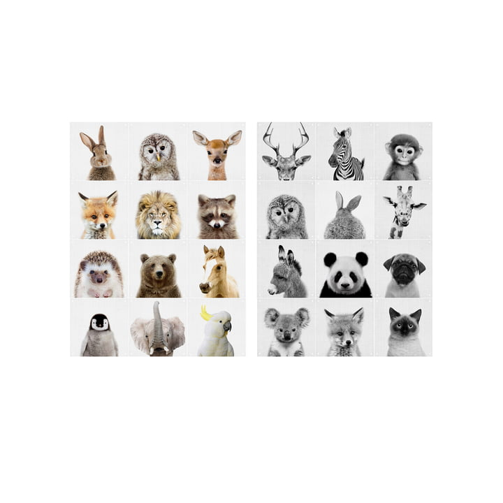 Animal Family Wandmotiv von IXXI