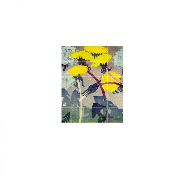 Löwenzahn (Mabel Royds) Poster von IXXI in 80 x 100 cm