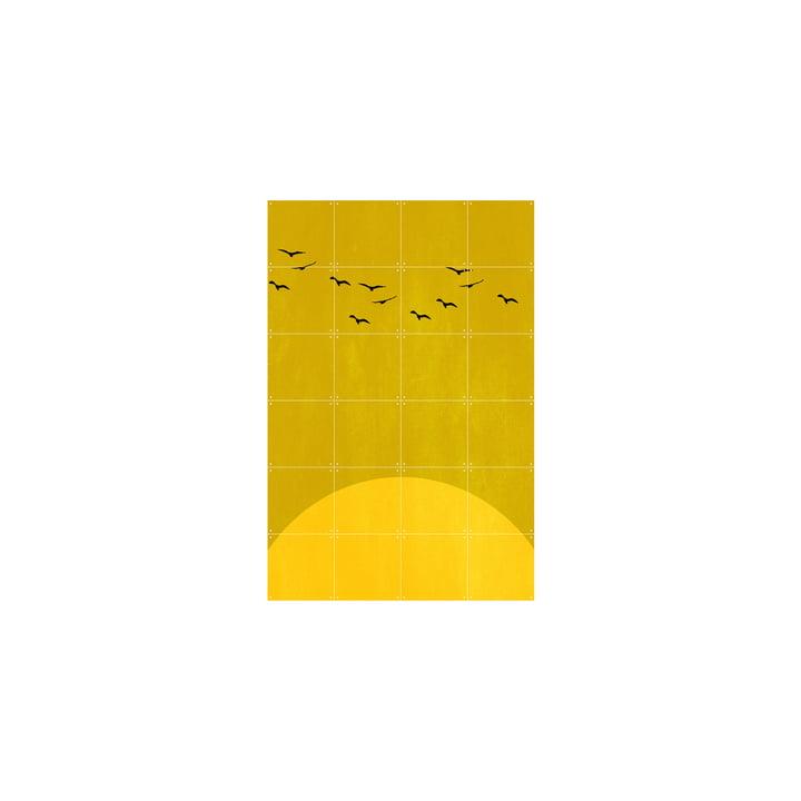 Sundance Poster von IXXI in 80 x 120 cm