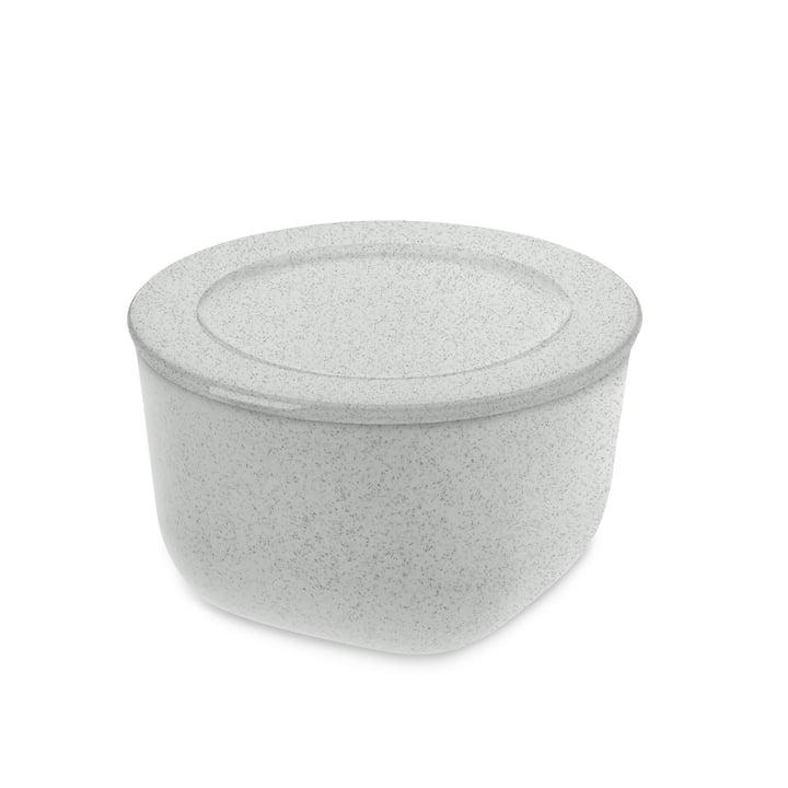 Connect M Vorratsdose 1 l von Koziol in organic grey