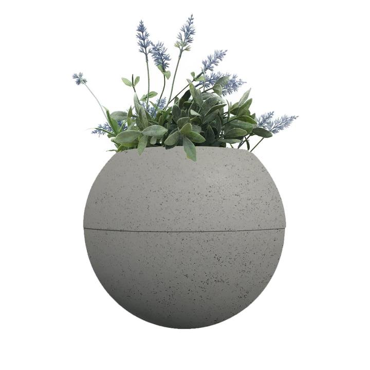 Der ballcony bloomball Pflanztopf von rephorm, betongrau