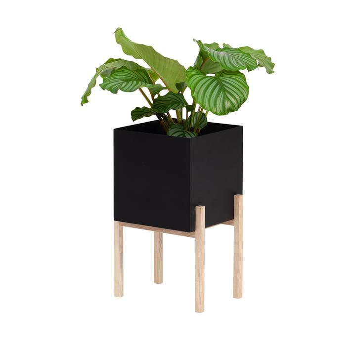 Der Botanic Pedestal Pot von Design House Stockholm, schwarz / natur