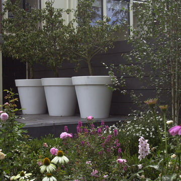 Bloom Pot ohne Beleuchtung, Trio weiss