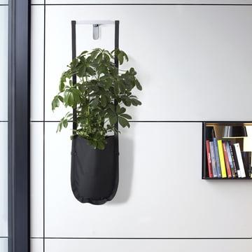 Authentics - Urban Garden Pflanztasche M, schwarz