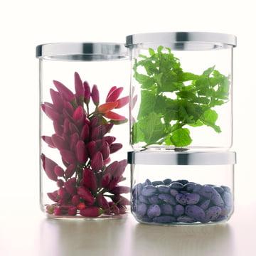 Jenaer Glas - Concept Storage Aufbewahrungsdose