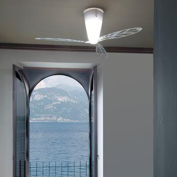 Blow Ventilator / Deckenleuchte von Luceplan
