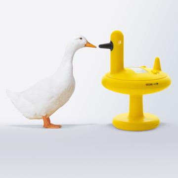 Alessi - Duck Timer Küchenuhr, gelb - mit Gans