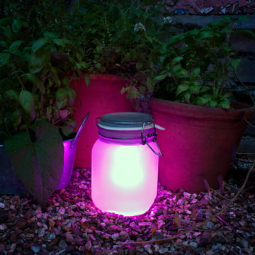Suck UK - Sun Jar, pink