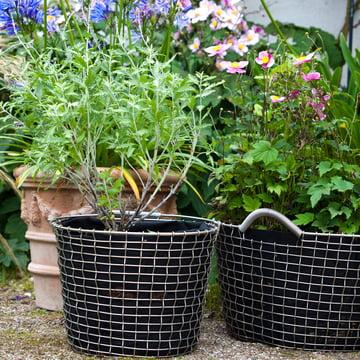 Bucket & Bin Drahtkorb von Korbo aus Edelstahl