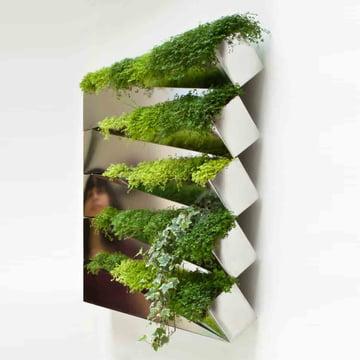 Miroir en Herbe Blumenkasten