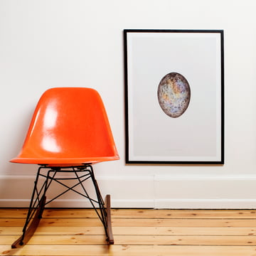Paper Collective - Poster Translucent Egg With spectrum Skull