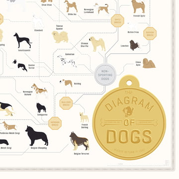Pop Chart Lab - The Diagram of Dogs