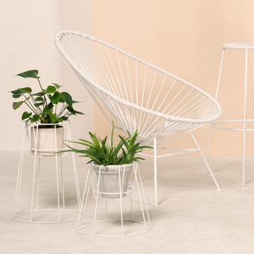 OK Design - Cibele Blumentopfständer, weiss, Acapulco Chair, weiss