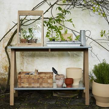 Zum Pflanzen, Umtopfen und Wachsen lassen