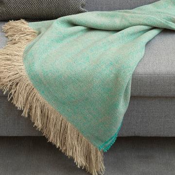 Ein sommerlicher Blickfang auf dem Sofa