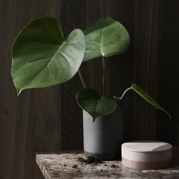 Die Cylindrical Vase in weiss