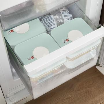 ehälter mit portionsgrossen verschliessbaren Dosen