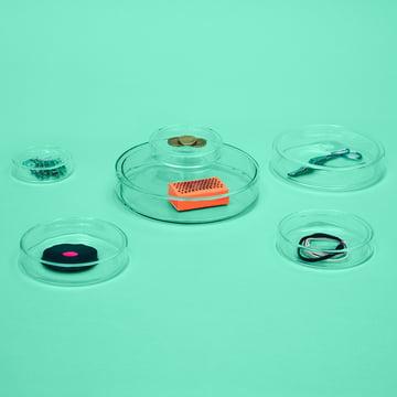 Kleine Glasschalen mit Deckel