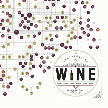 The Genealogy of Wine von Pop Chart Lab