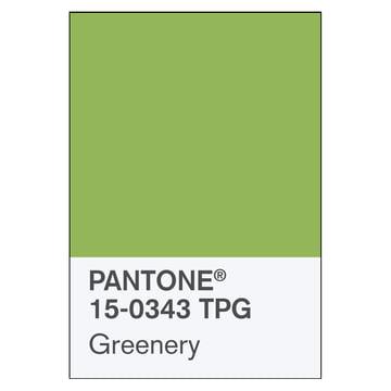 Pantone-Farbe des Jahres 2017: Greenery 15-0343