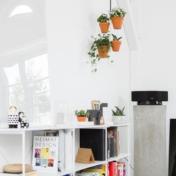 Weiße Wände + Accessoires und Pflanzen = Wohlfühlambiente