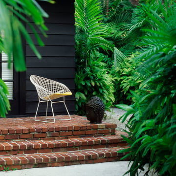 Bertoia Diamond Outdoor-Sessel von Knoll