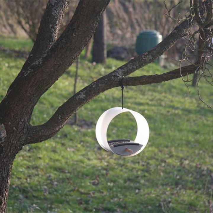 pick.up Futterstelle von Keilbach an einem Baum befestigt