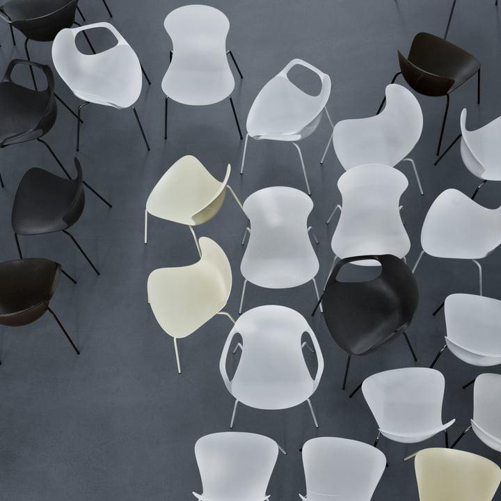 Produktvielfalt des Nap Stuhls